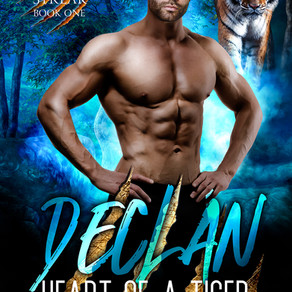COVER REVEAL: Declan - Heart of a Tiger