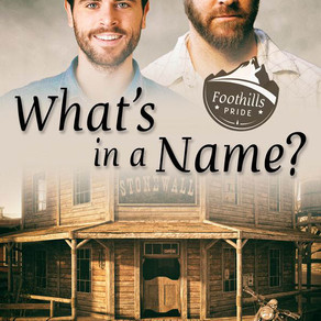 "Blog Tour - ""What's in a Name?"" by Pat Henshaw"