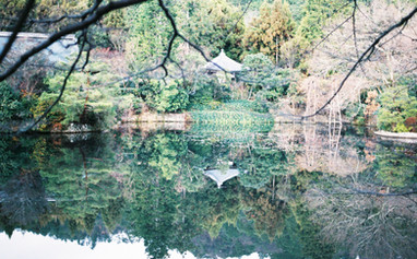 kingaku-ji