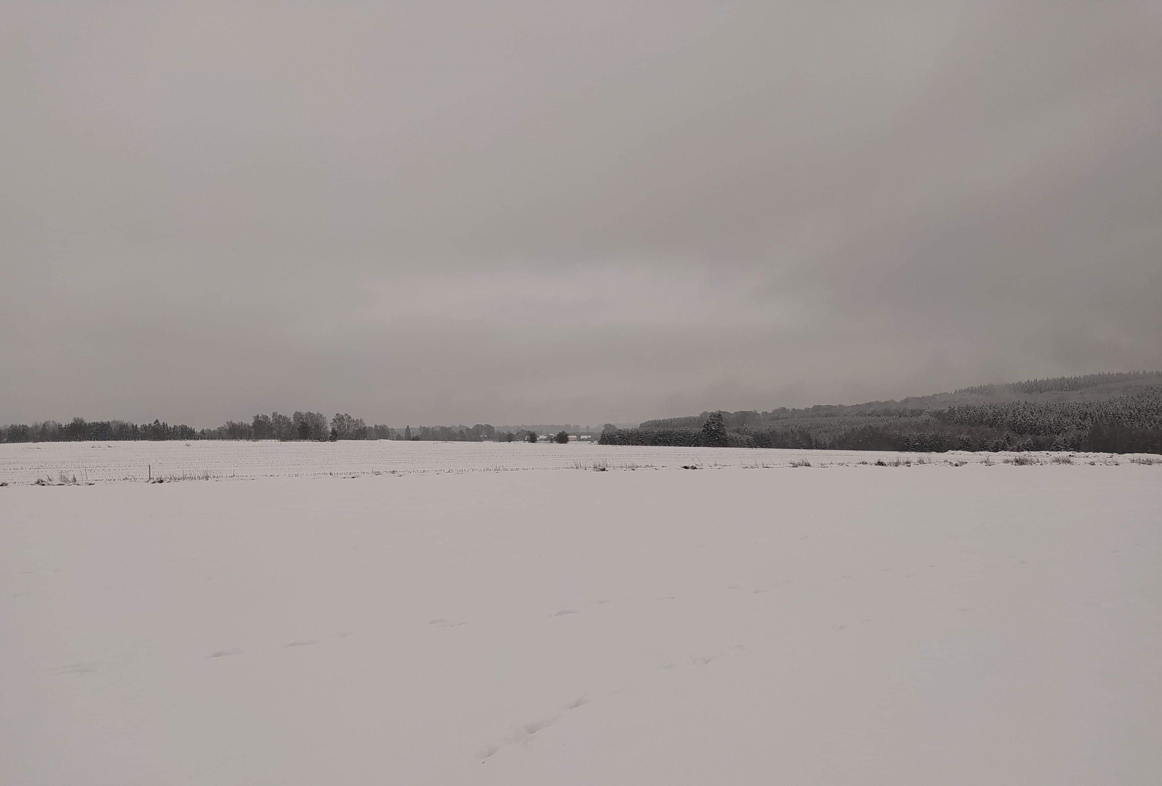 balade neige 4