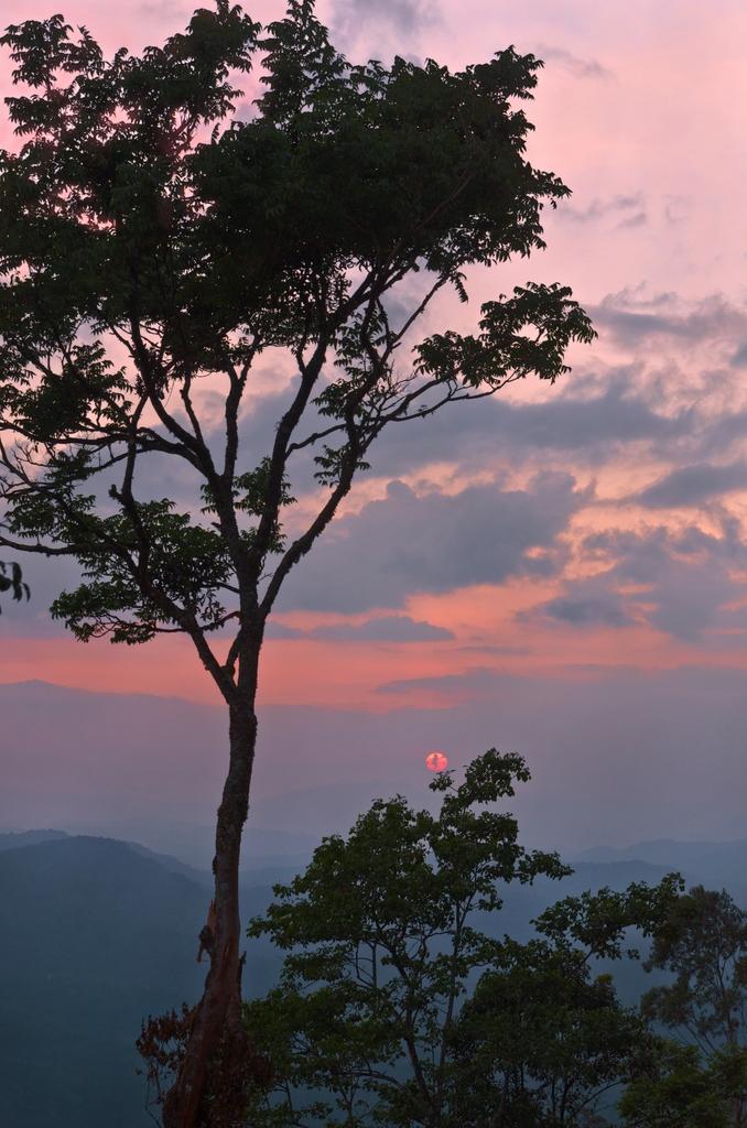 Sunset_AHP2912