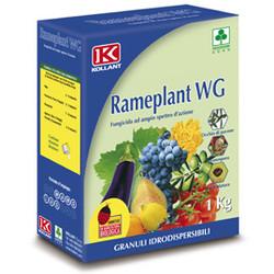 rameplant fungicida rame