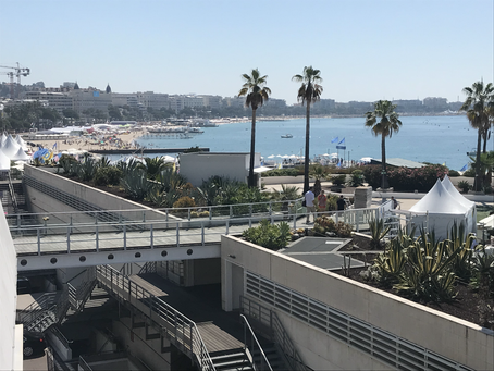 Cannes unveils high-tech system to disinfect public spaces