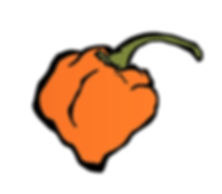 Peppr Logo