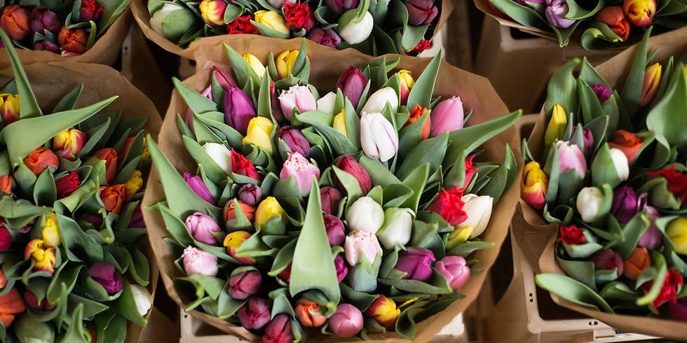 MMN Field Trip to Tulip Farm Overdevest in Wassenaar