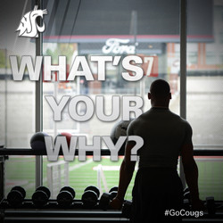 WHAT'S YOUR WHY_
