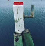 Wagstaff wharf