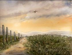Path Across the Moors.jpg