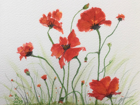 Even more poppies!