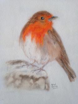 Winter Robin 2017