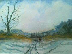 Tracks in the Snow.JPG