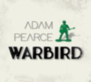 warbird-cover-DD2.jpg