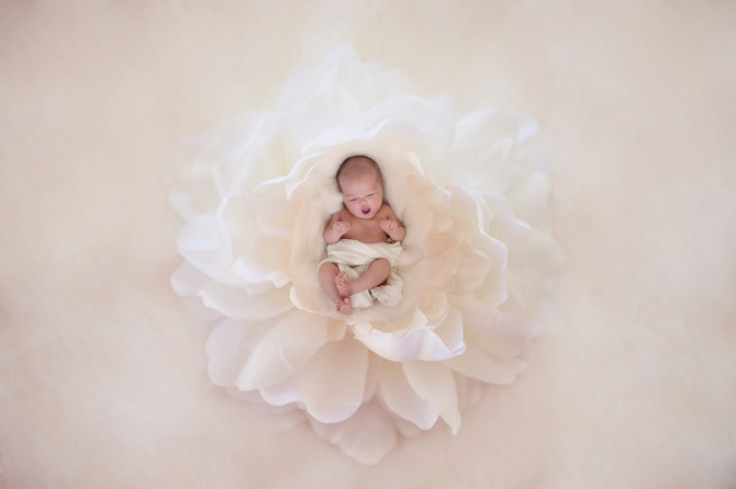 Sweet Newborn Session