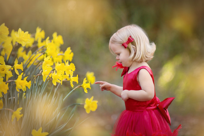 Little Girl In A Red Dress Photo Session