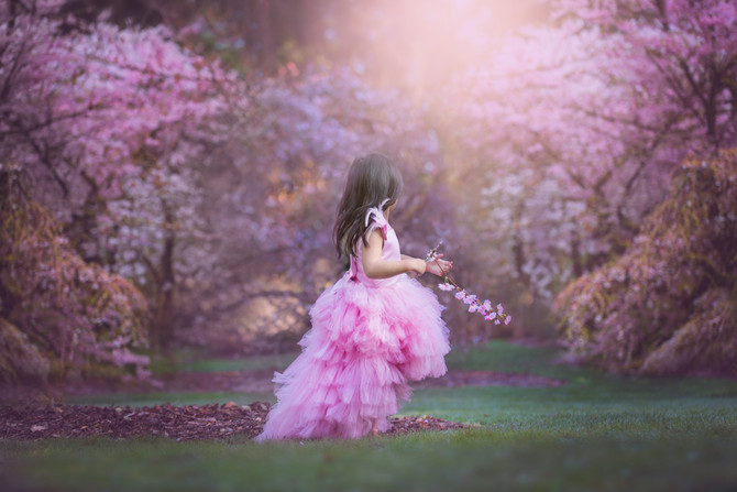 Princess Cherry Blossom Session | Seattle Photographer
