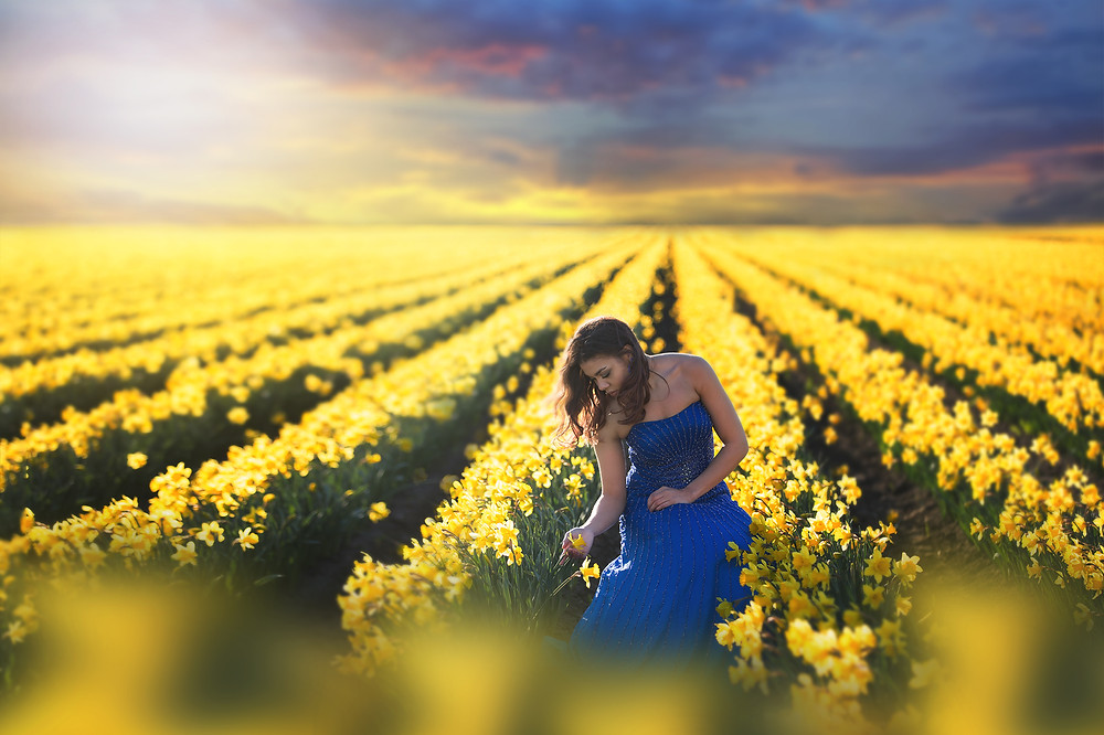 Daffodil Fields Session, Seattle Portrait Photographer