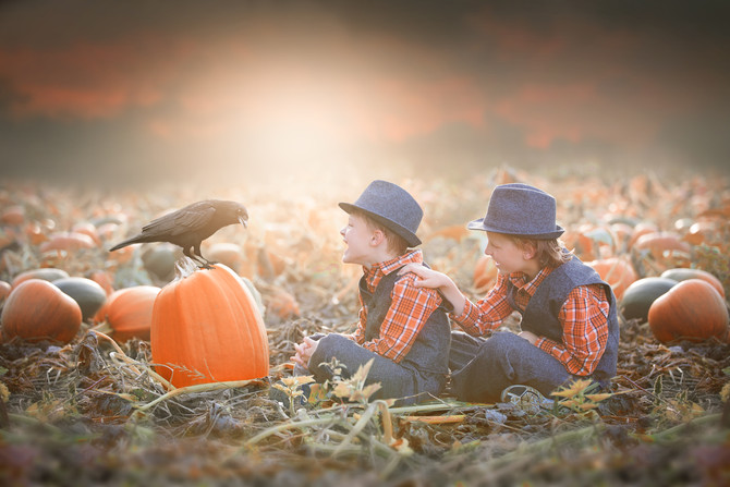 Happy Halloween! Pumpkin Patch Session