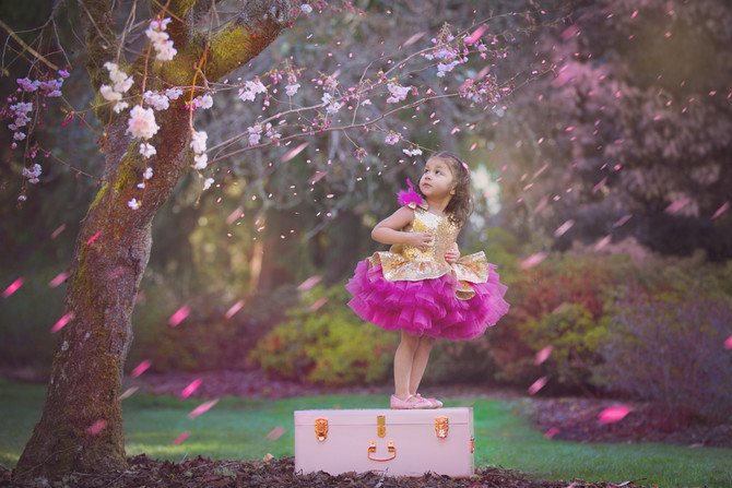 Little Girl Cherry Blossom Session | Seattle Photographer