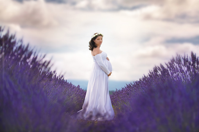 Lavender Fields Maternity Session
