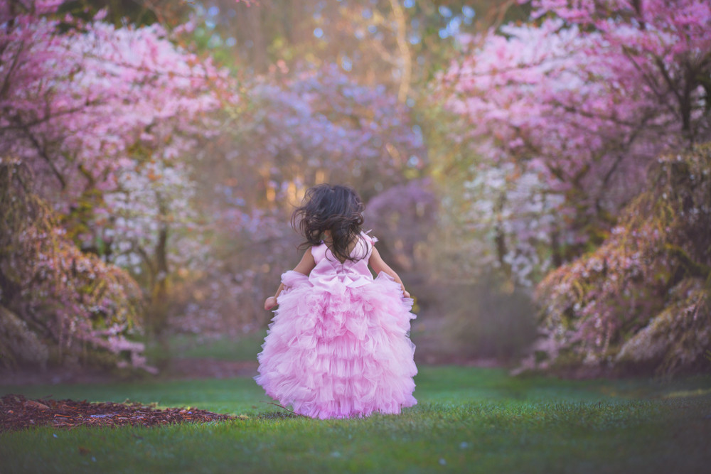 Princess, Cherry Blossom Photo Session
