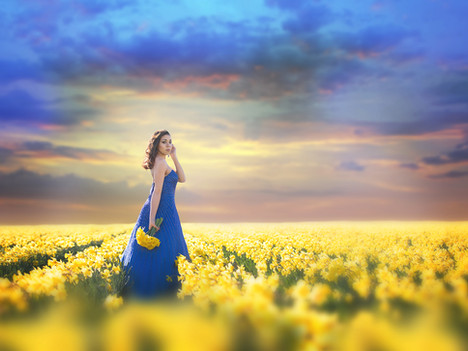 Zoe Brown Daffodils 2018031 web.jpg