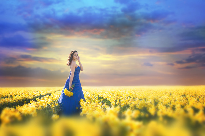 Daffodil Fields Session | Portrait Photographer, WA