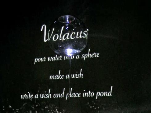 Volacus