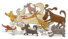FFD dogs Pic2.png