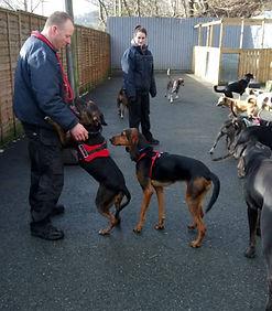 Fun Fur Dogs Personal Service