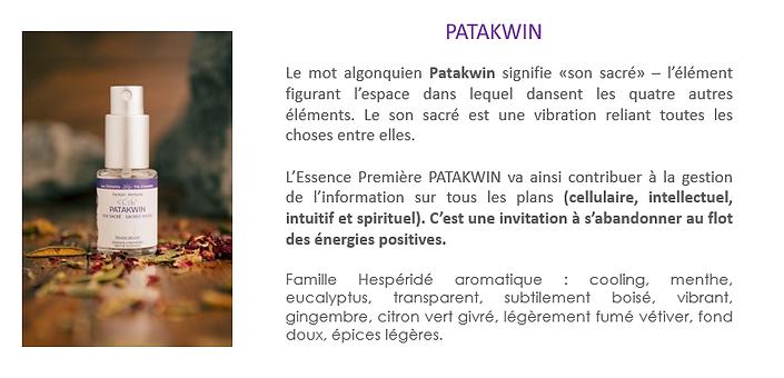 fiche Patakwiin.png