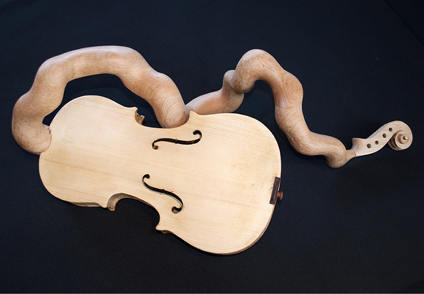 Mr.Curly's Violin, By Pascal Proteau 2014