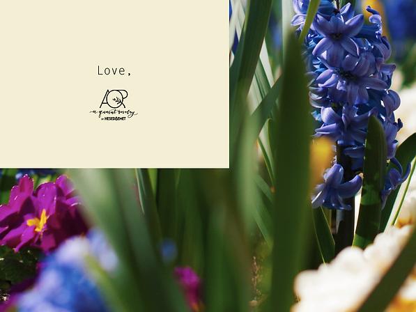 marchbirthflower2.png
