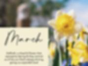 marchbirthflower.png