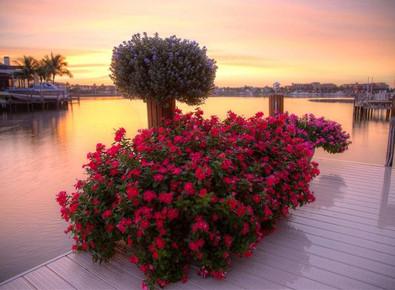 Sunset dock 10-14-12_0.jpg