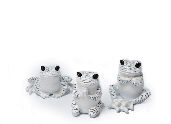 White Fancy Frogs