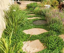 שביל אבני מדרך טיבעיות בגינה