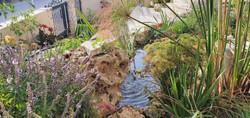בריכת נוי ומפל בגינה