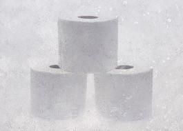 Toilet Paper: A Short Story