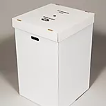 Disposable Trash or Recycling Box