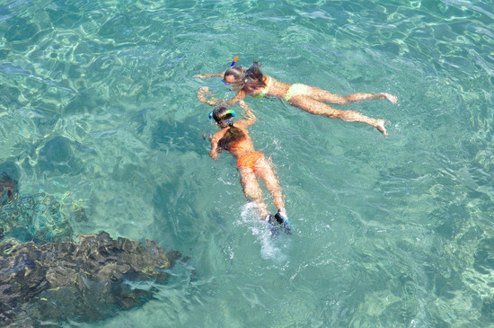 Snorkelling amidst Coral Reefs