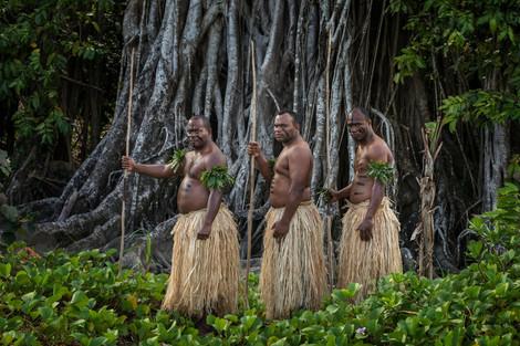 Fijian Warriors by the Banyan Tree
