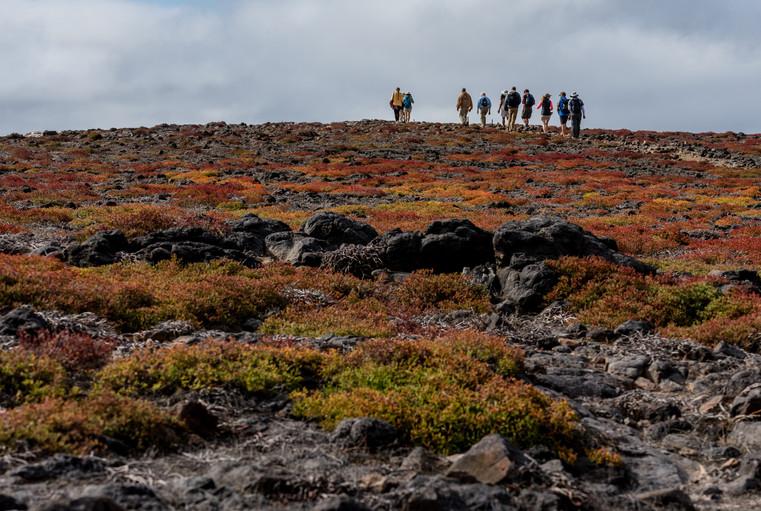 Galapagos Island Excursions