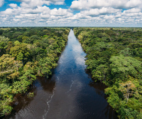 Sail the Amazon