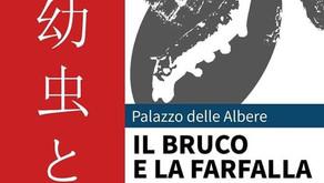 IL BRUCO E LA FARFALLA, Palazzo delle Albere, Trento