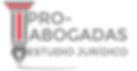 LOGO OFICIAL rojo 3.png