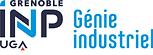 Grenoble INP - Génie industriel (couleur, RVB, 120px).png