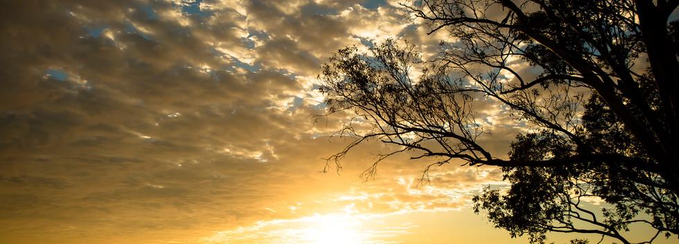 the still of life opens the sky.jpg