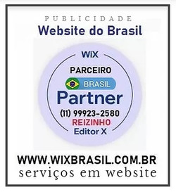 WIX BRASIL 11 99923-2580 SP - Agência Br