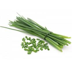 cebolinha-verde-maco-dois-cunhados-un.pn
