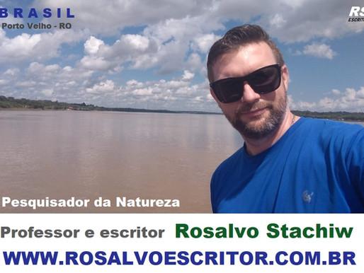 Rosalvo Stachiw Escritor